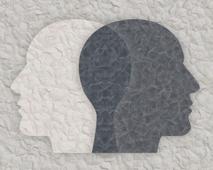 Bipolar, grieta, head,geralt,pixabay,